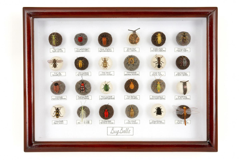 'Bug Balls V', 2010