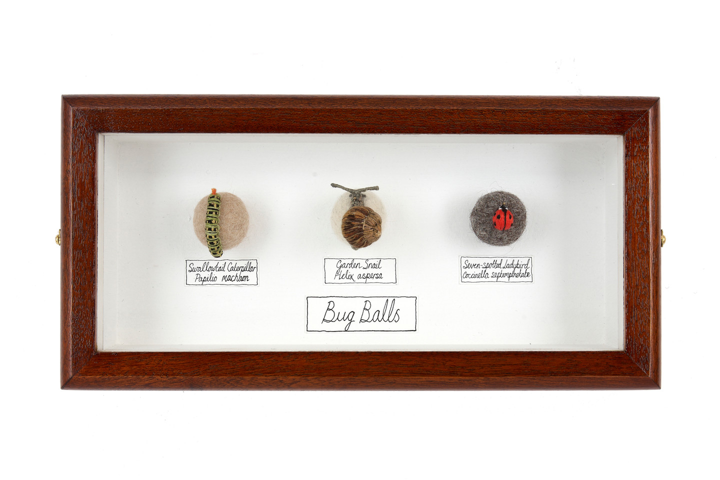 Triple Bug Ball collection