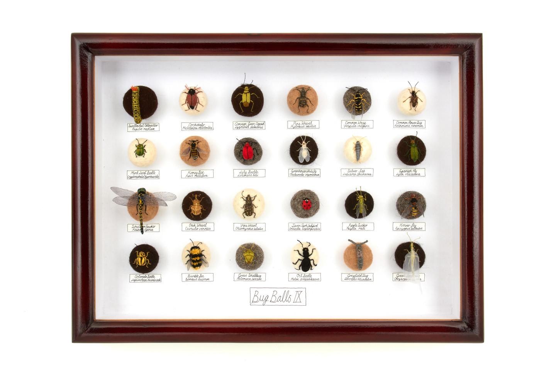 'Bug Balls IX', 2011