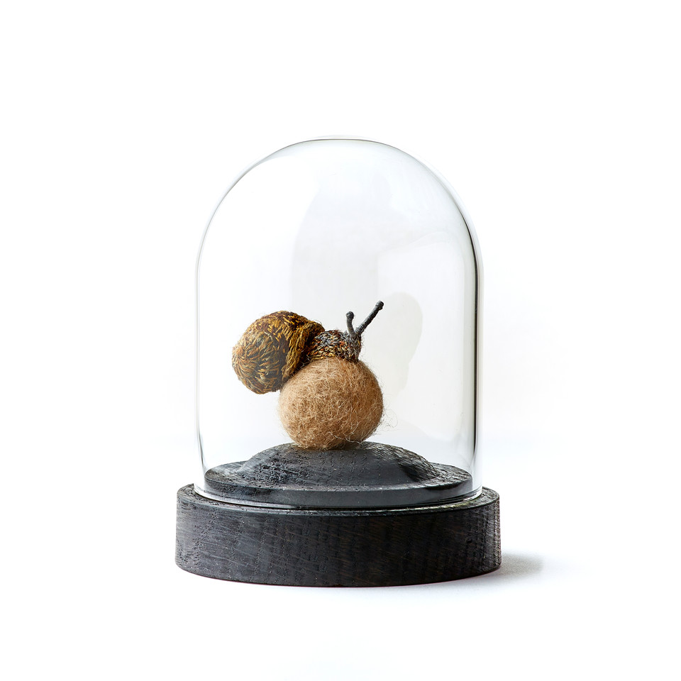 Garden Snail in glass dome