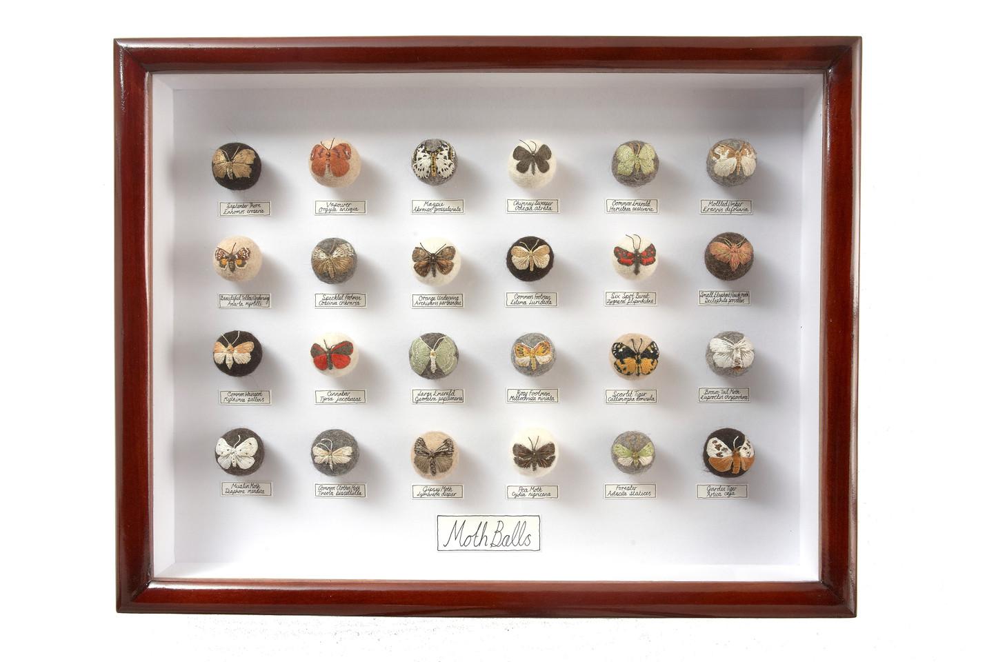 'Moth Balls V', 2010