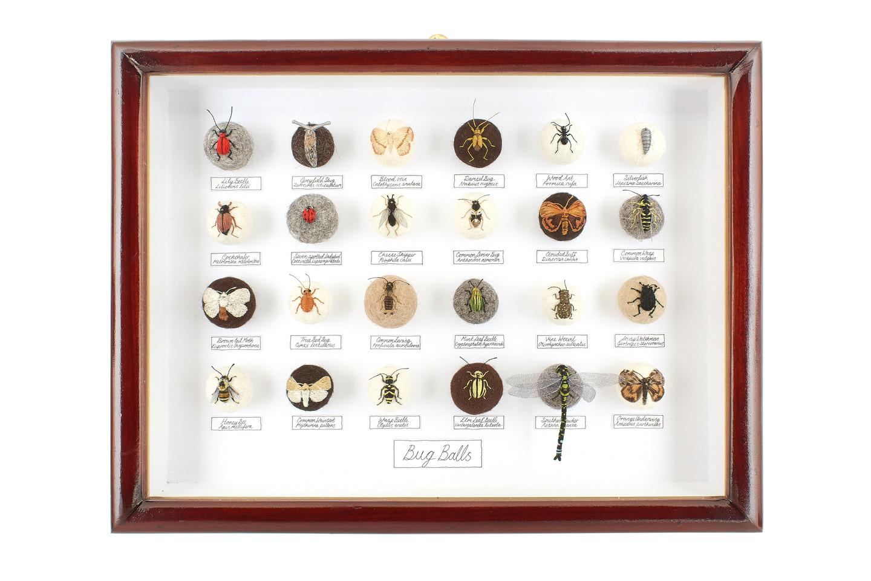 'Bug Balls XIII', 2013