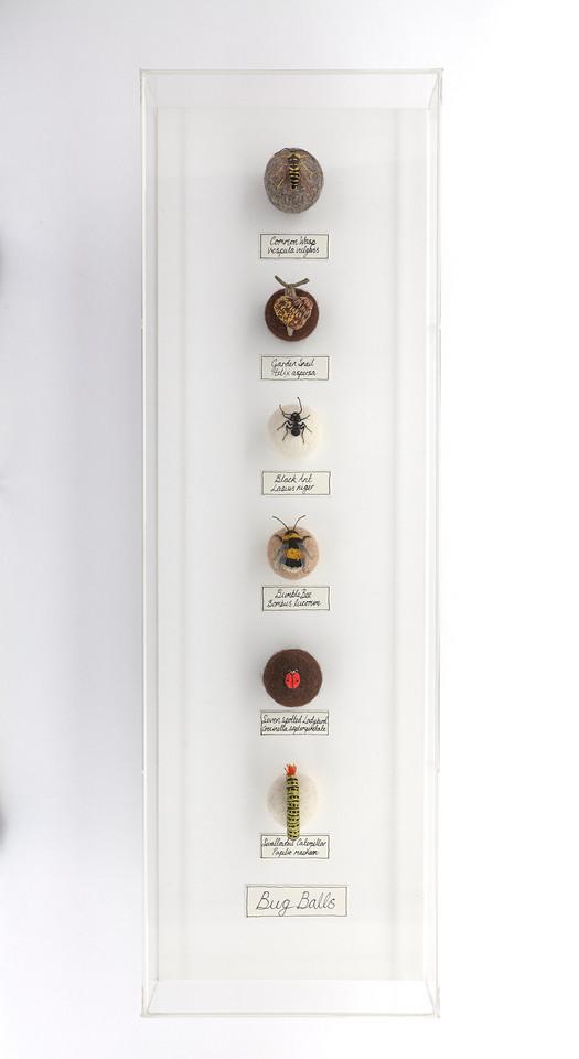 Six Bug Ball Collection