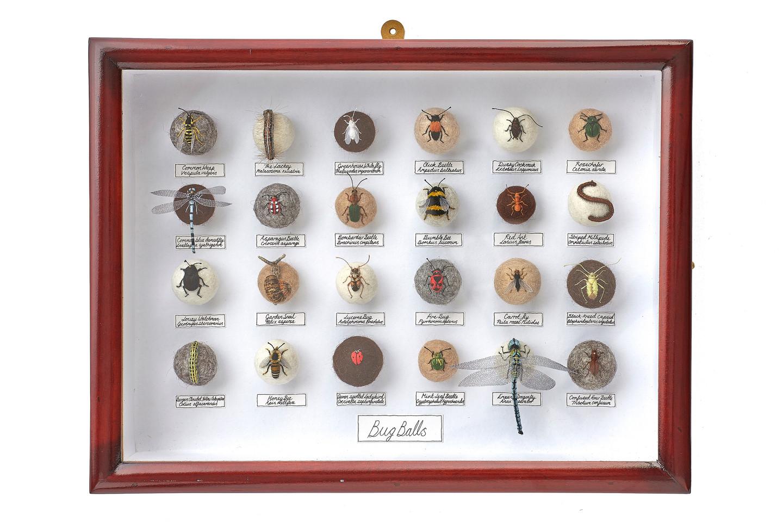'Bug Balls XXII', 2014
