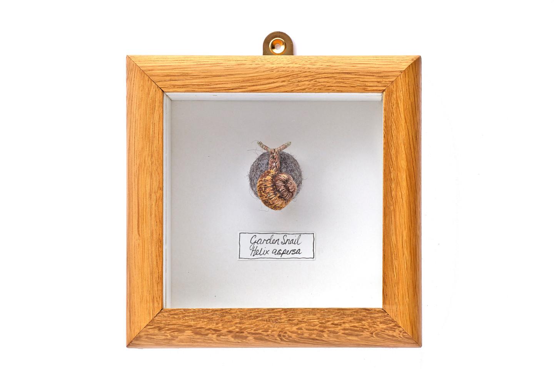 Garden Snail Bug Ball in oak box frame