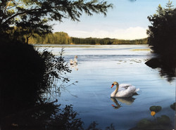 Swans on a Lake in Finland 2, Rafael Guerra Painting