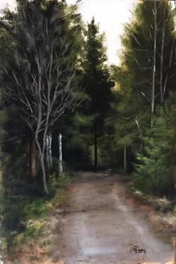 Little Earth Road, Rafael Guerra Painting Pintura
