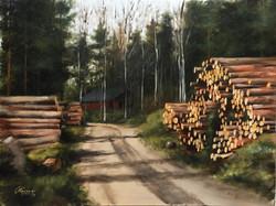 Wood Trunks on an Earth Road, Rafael Guerra Painting Pintura