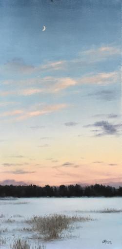 Finnish Sky in Winter, Rafael Guerra Painting