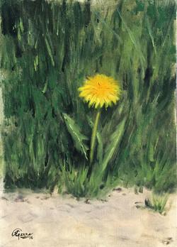 Dandelion Flower 1, Rafael Guerra Painting Pintura