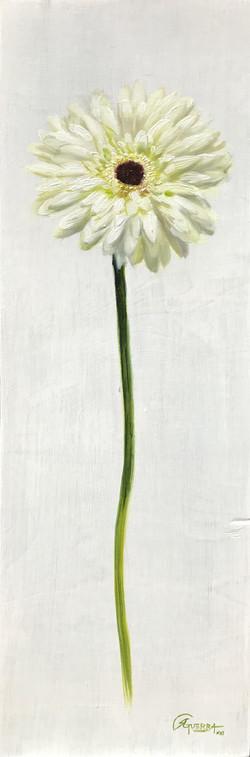 White Flower, Rafael Guerra Painting