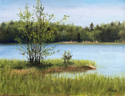 Little Island on a Lake in Spring, Rafael Guerra Painting Pintura
