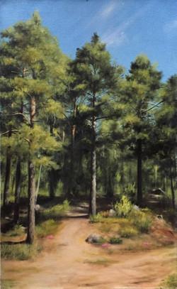 Finnish Pine Trees in Summer, Rafael Guerra Painting