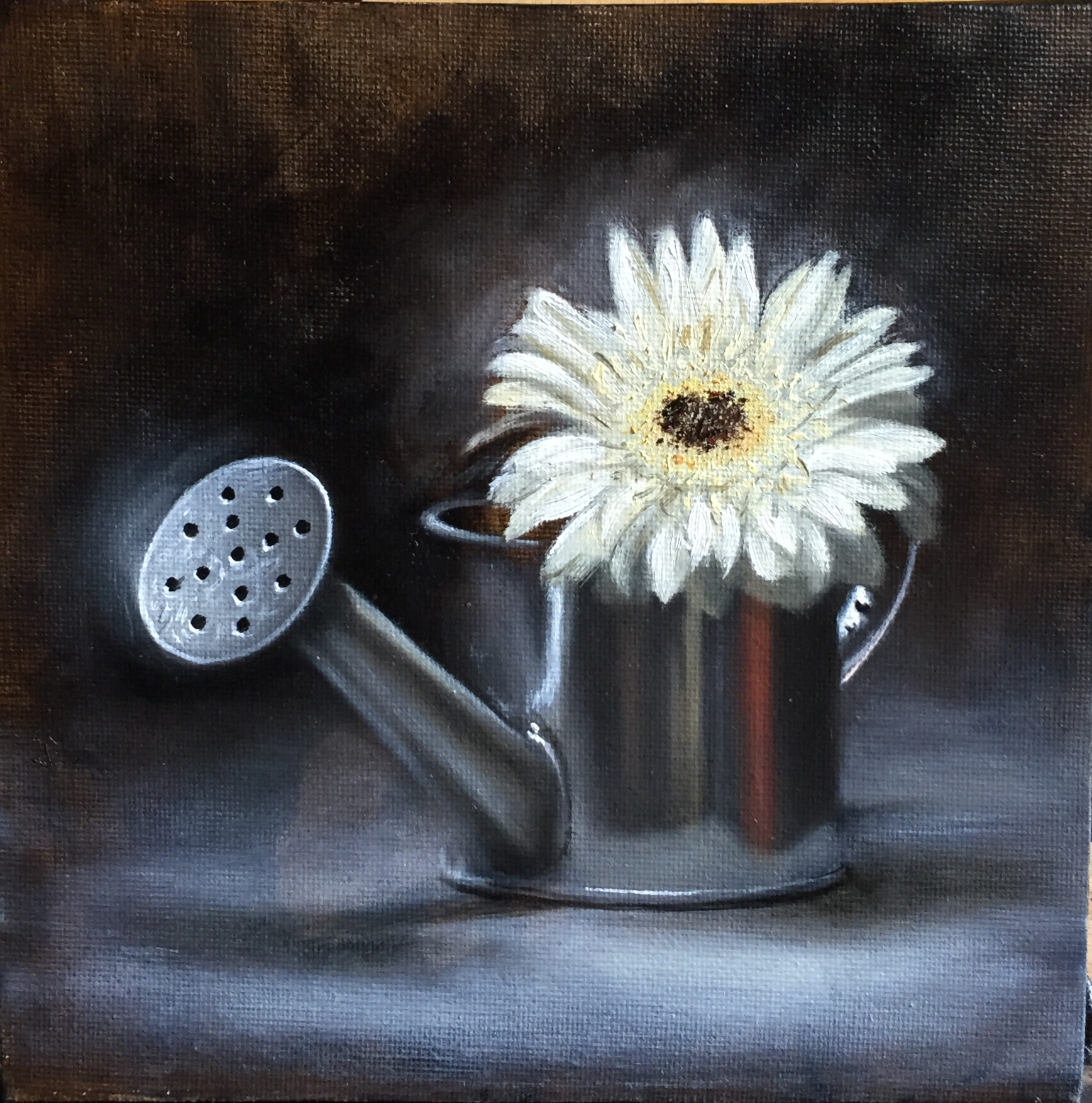 Watering Can and White Flower