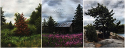 Small Finnish Scapes on Cloudy Days