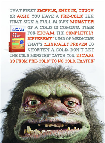 Zicam_Manifesto_2019_border_edited.jpg