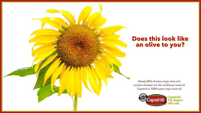 capa_sunflower.png