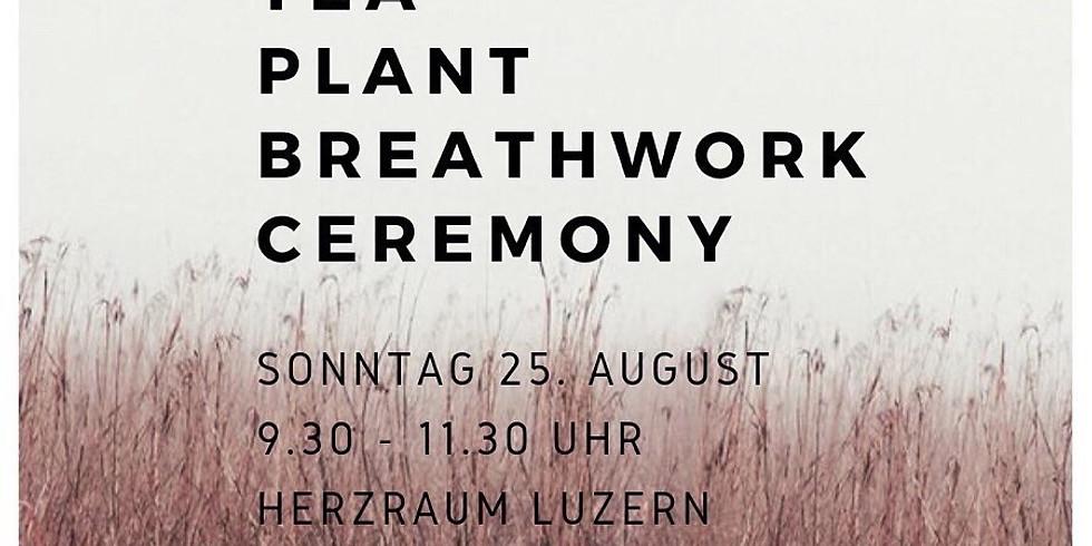 Tea Plant Breathwork Ceremony mit Manuela Schöpfer