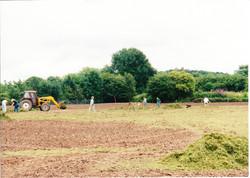 Seeding the Meadows 05