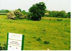 Site Before 006