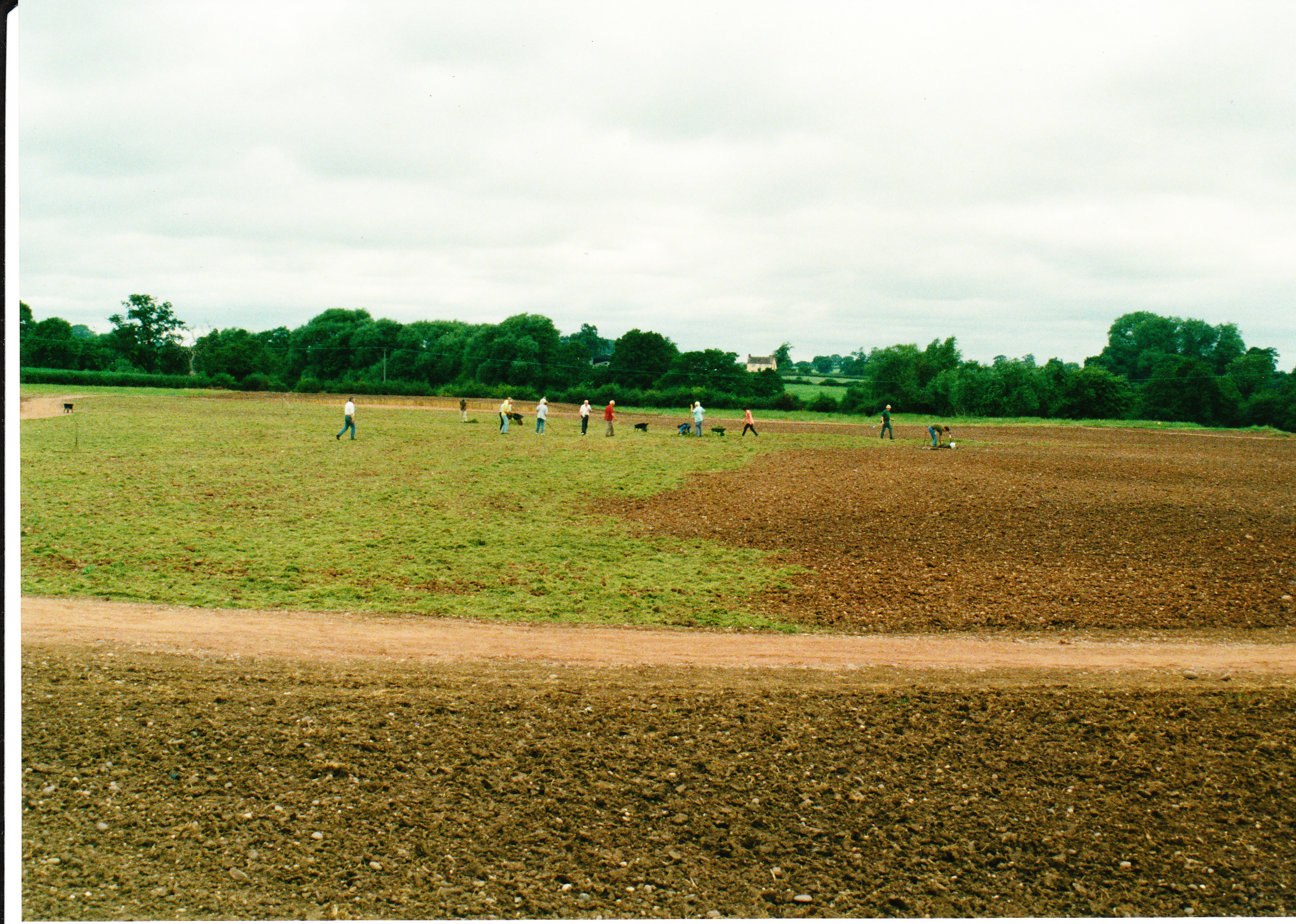 Seeding the Meadows 12