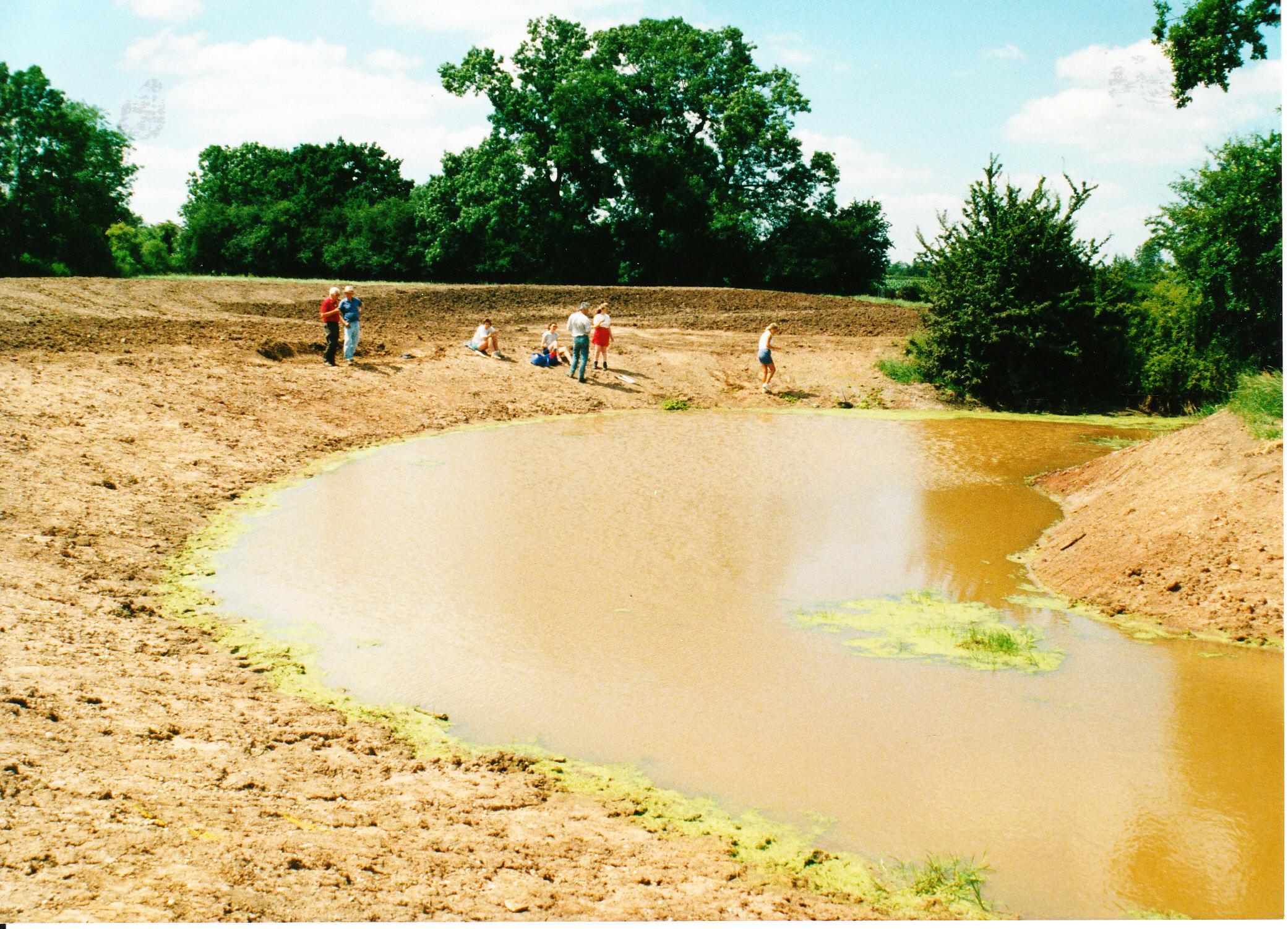 Pond Creation 19
