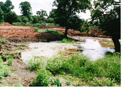 Pond Creation 07