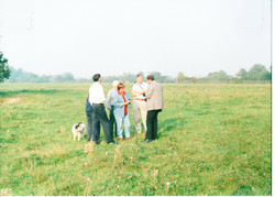 Site Before 002