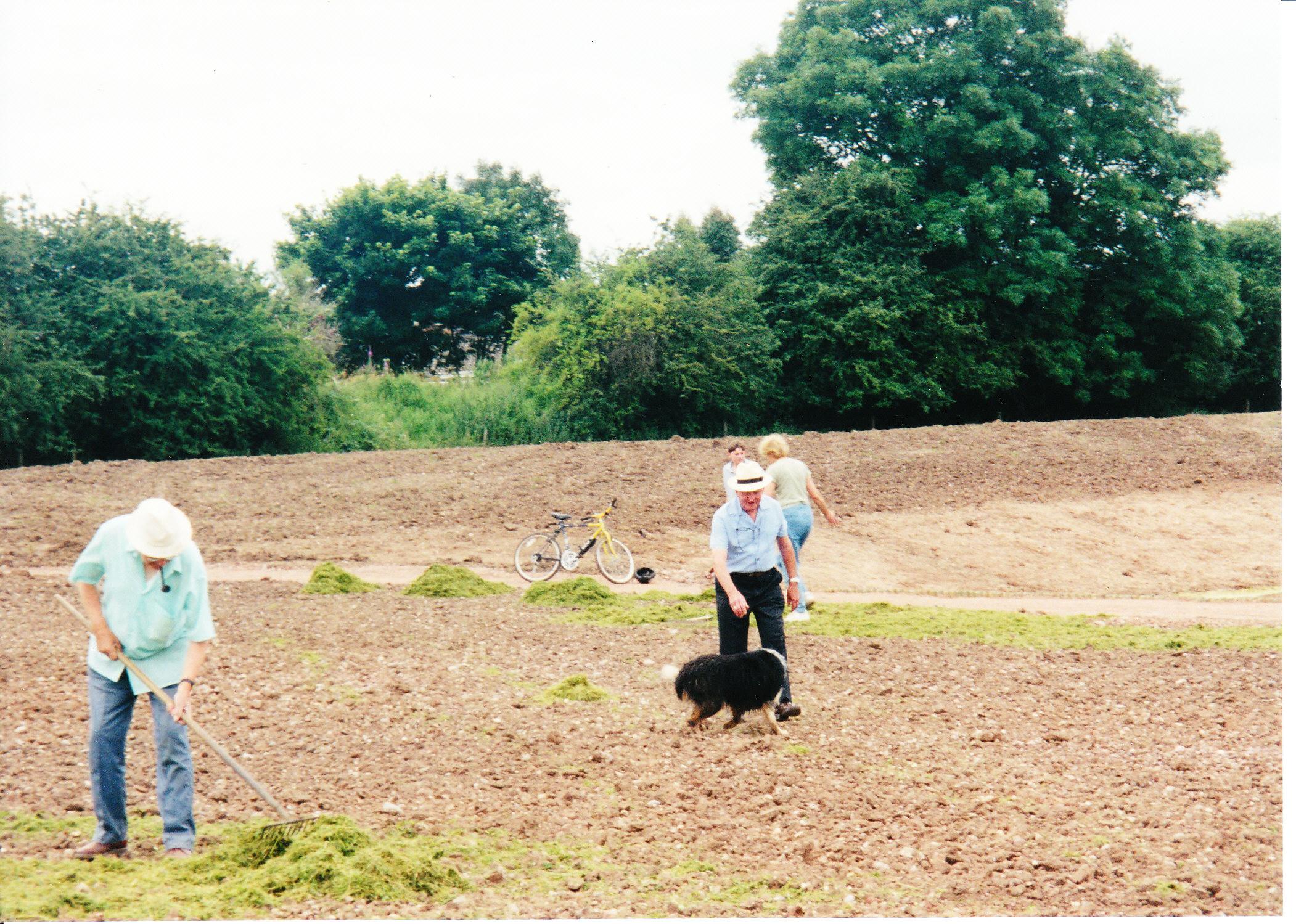 Seeding the Meadows 10