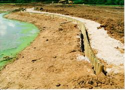 Pond Creation 18