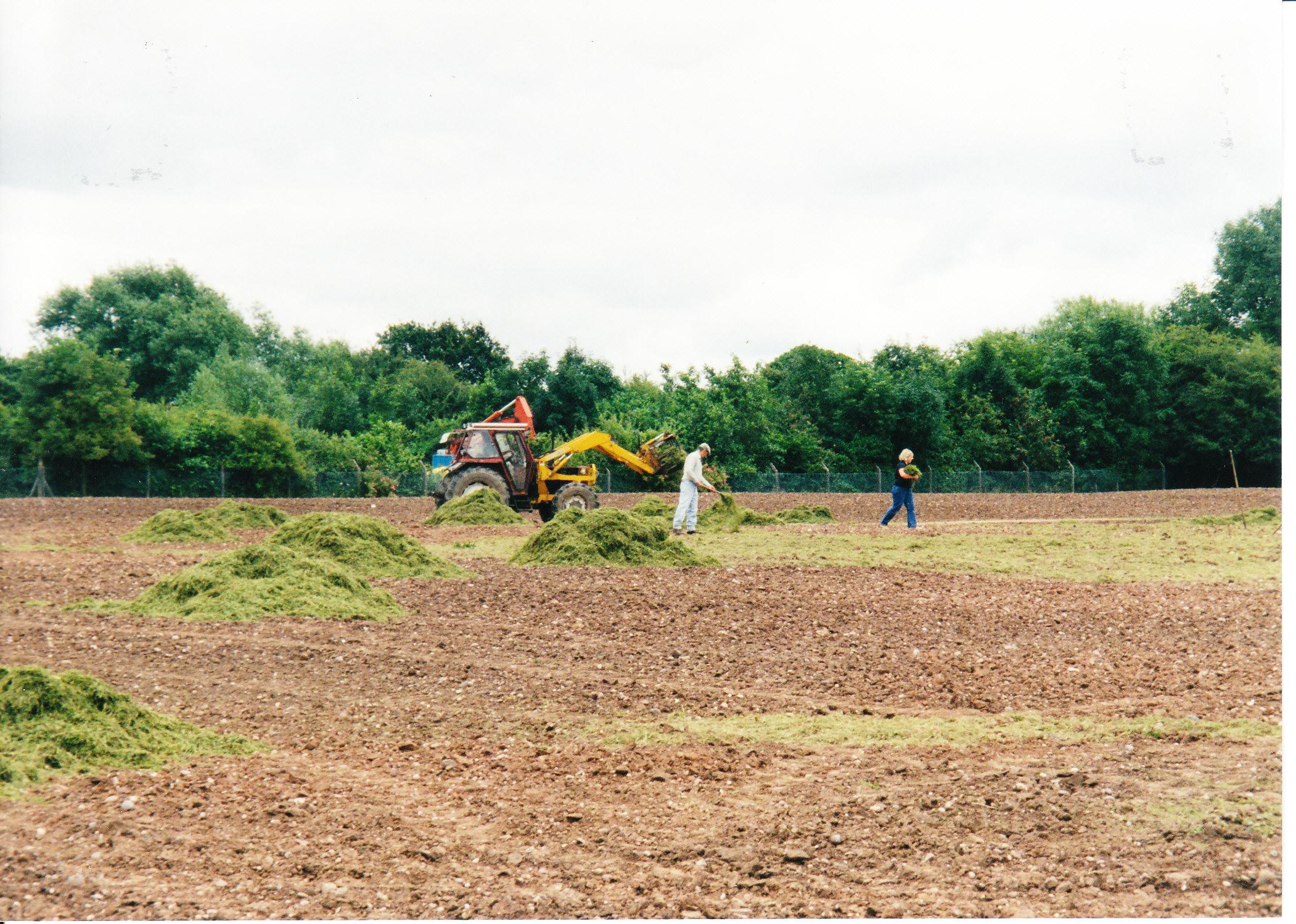 Seeding the Meadows 07