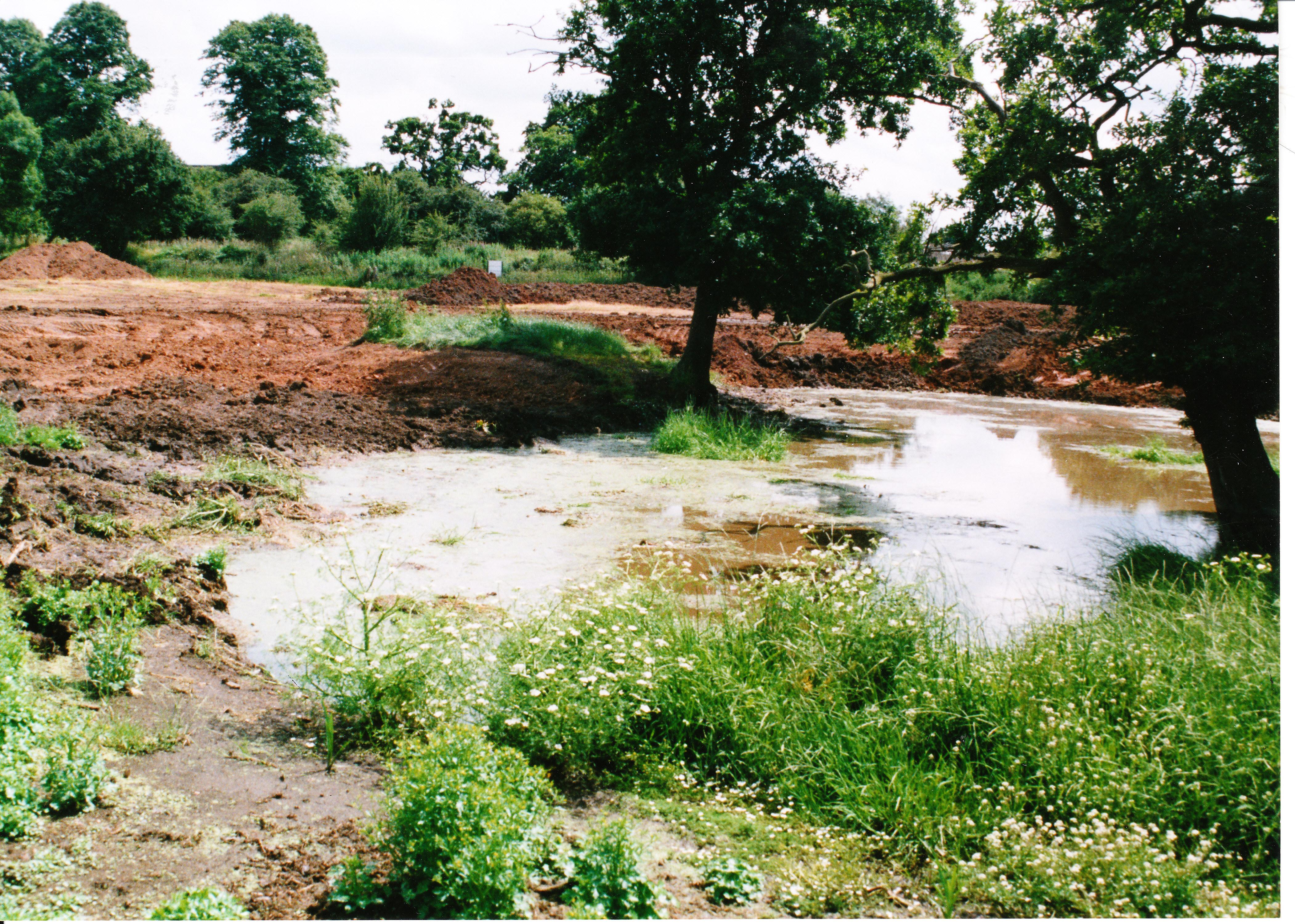 Pond Creation 10