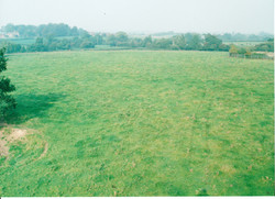 Site Before 003