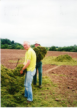 Seeding the Meadows 11