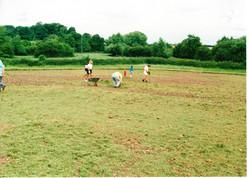 Seeding the Meadows 18