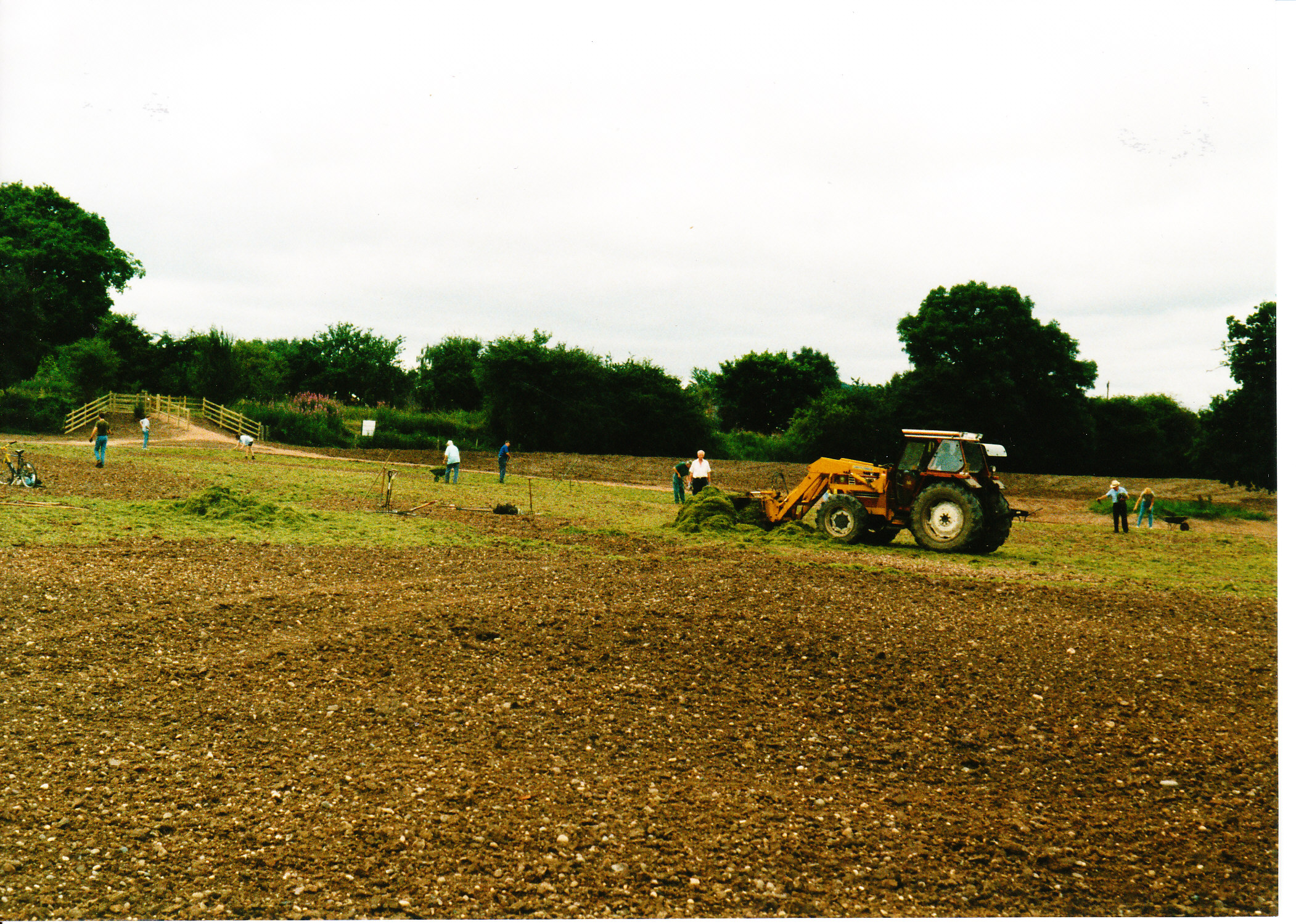 Seeding the Meadows 03