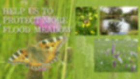 campaign-picture-001.jpg