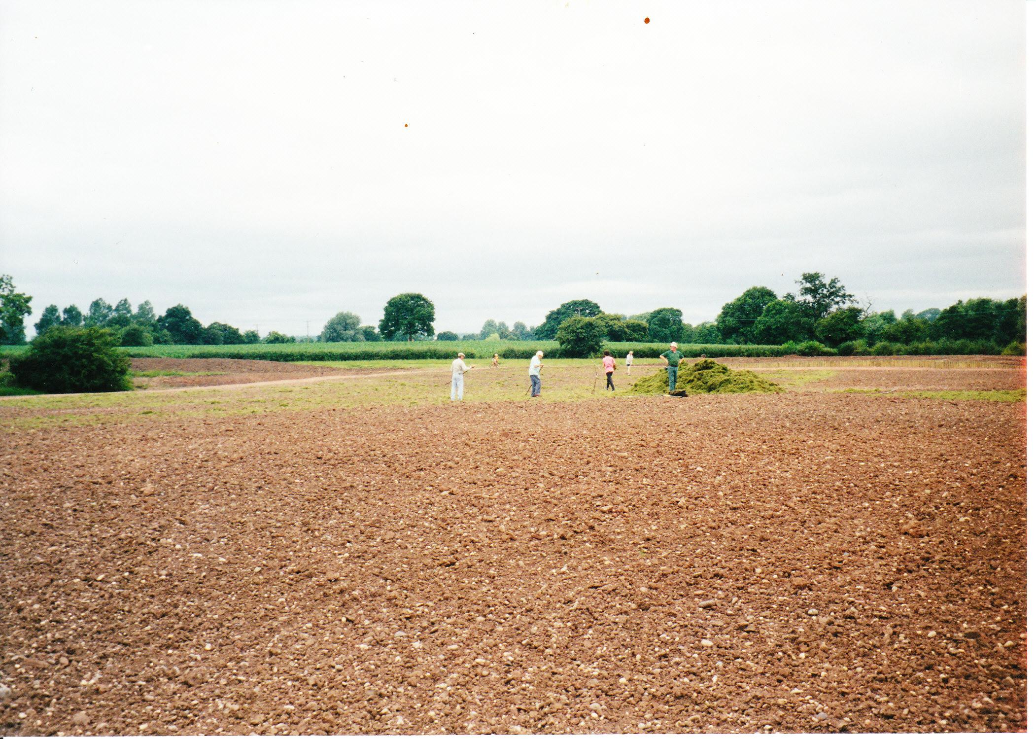 Seeding the Meadows 08
