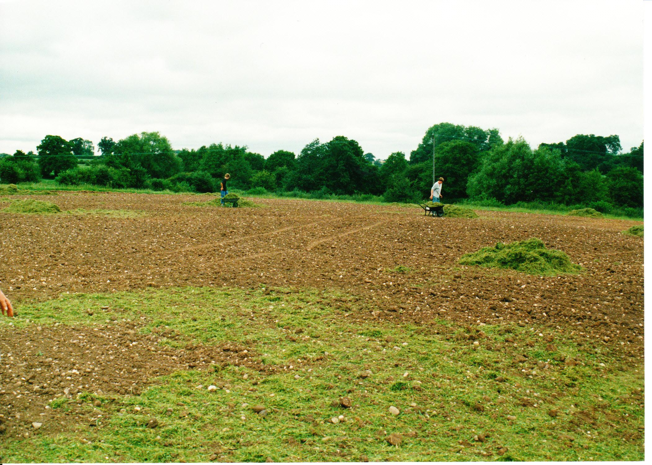 Seeding the Meadows 16