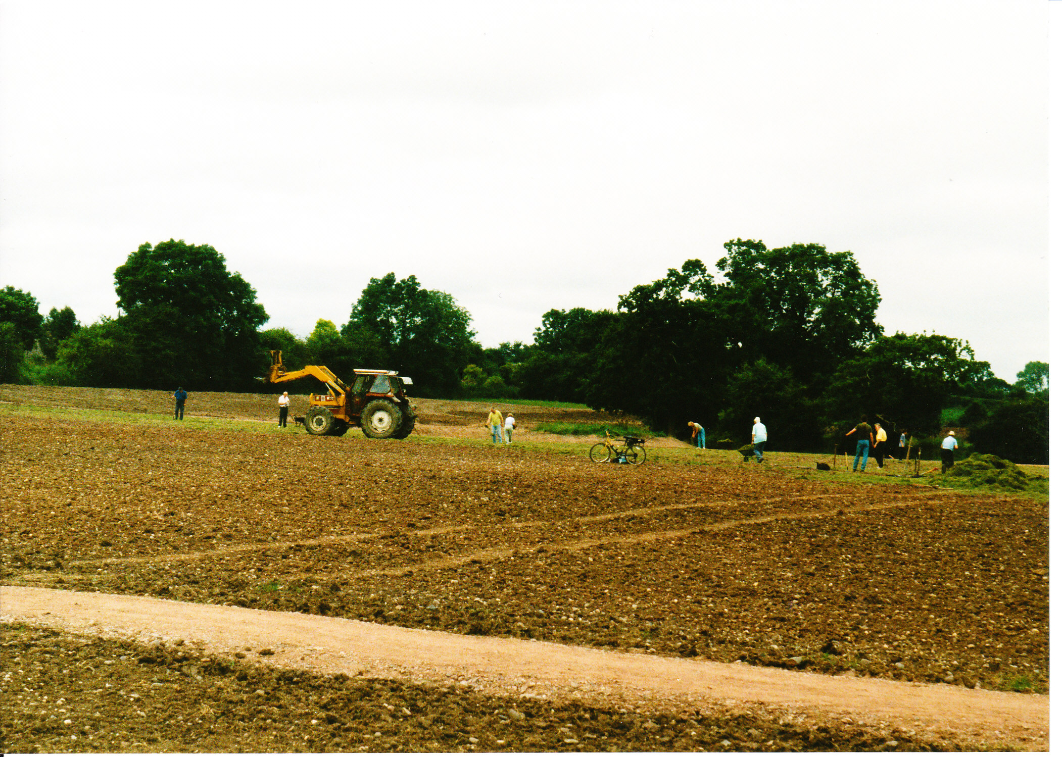 Seeding the Meadows 04