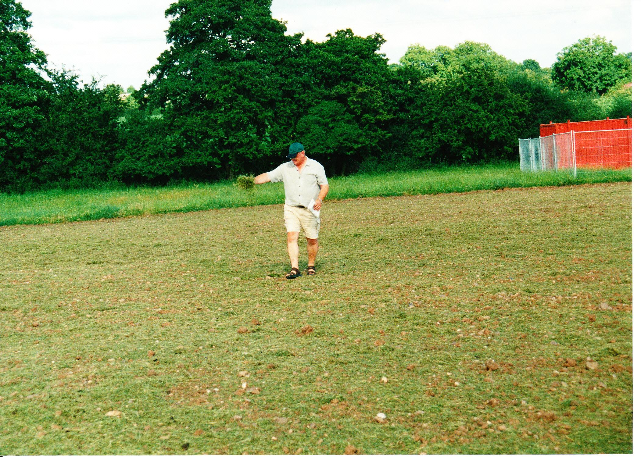 Seeding the Meadows 17