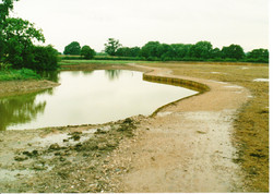 Completed Pond 09