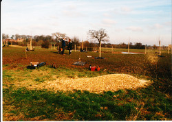 Orchard Creation 09