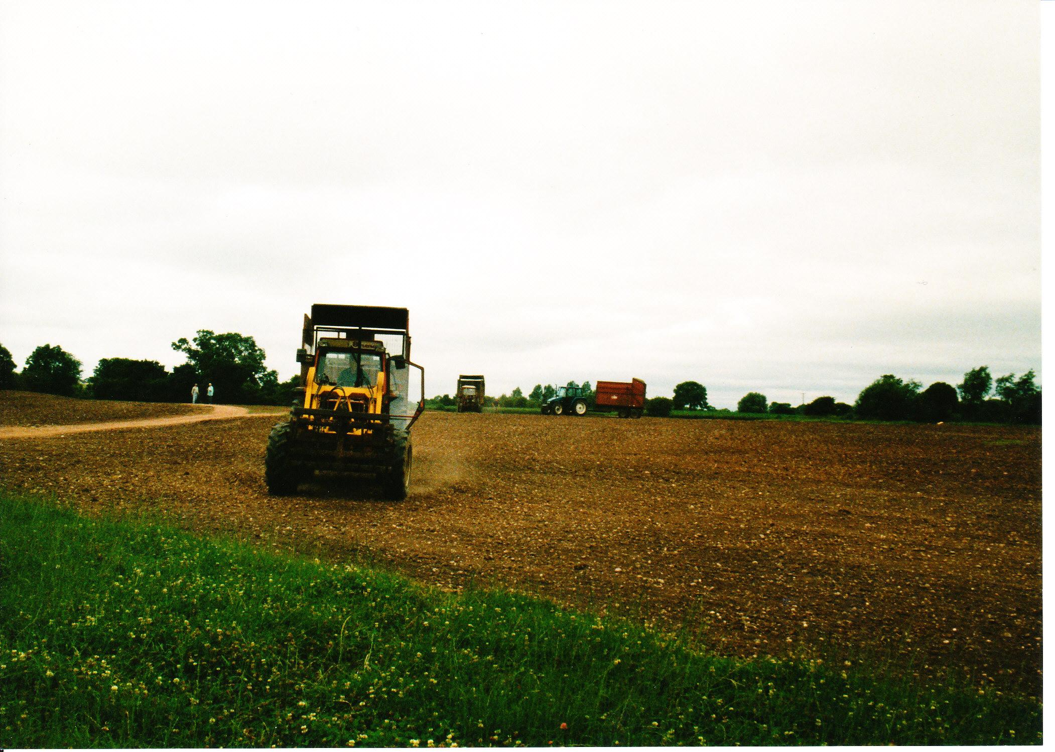 Seeding the Meadows 02