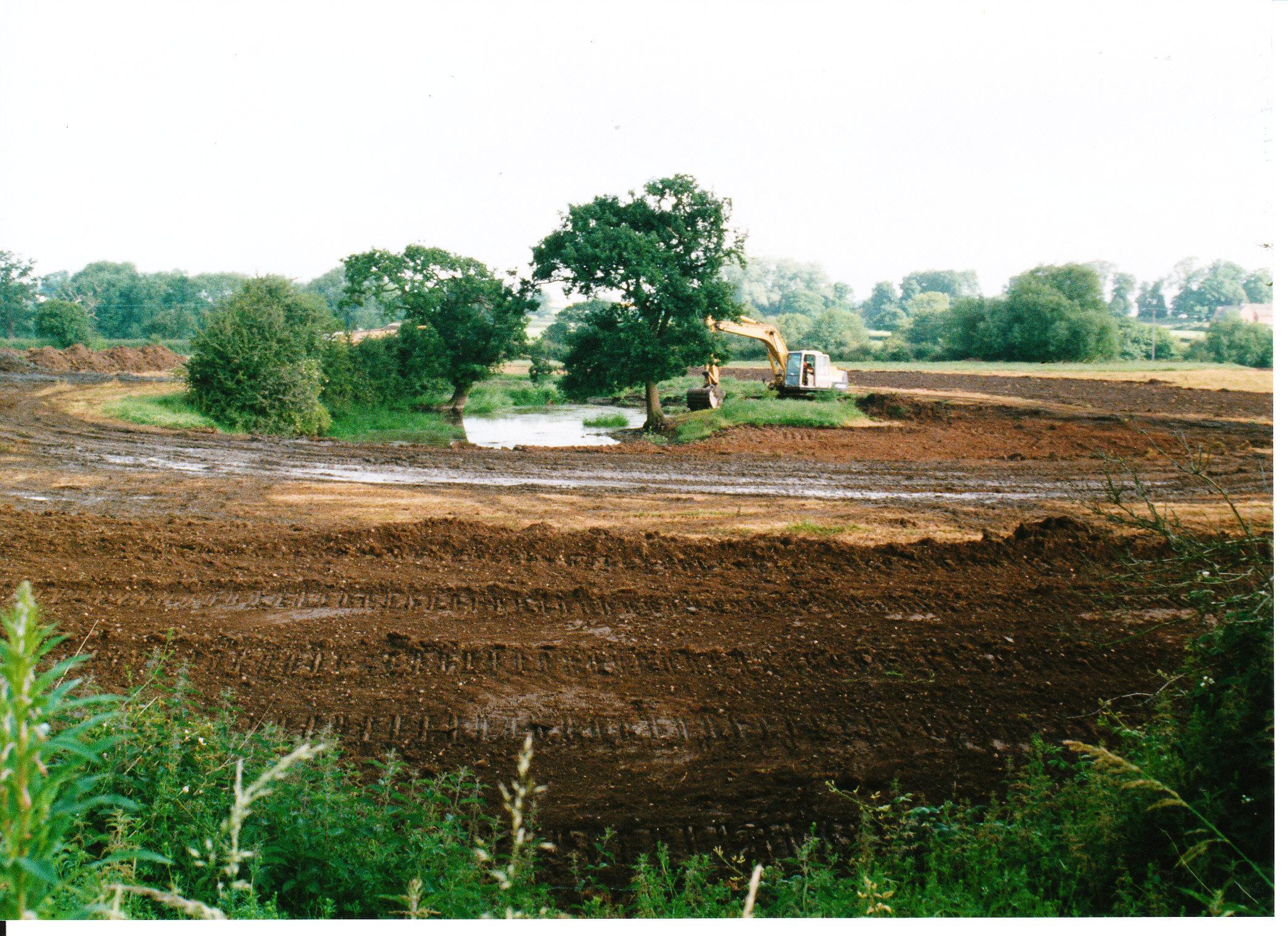 Pond Creation 06