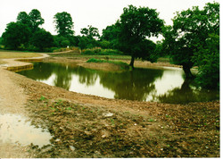 Completed Pond 08