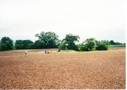 Seeding the Meadows 06