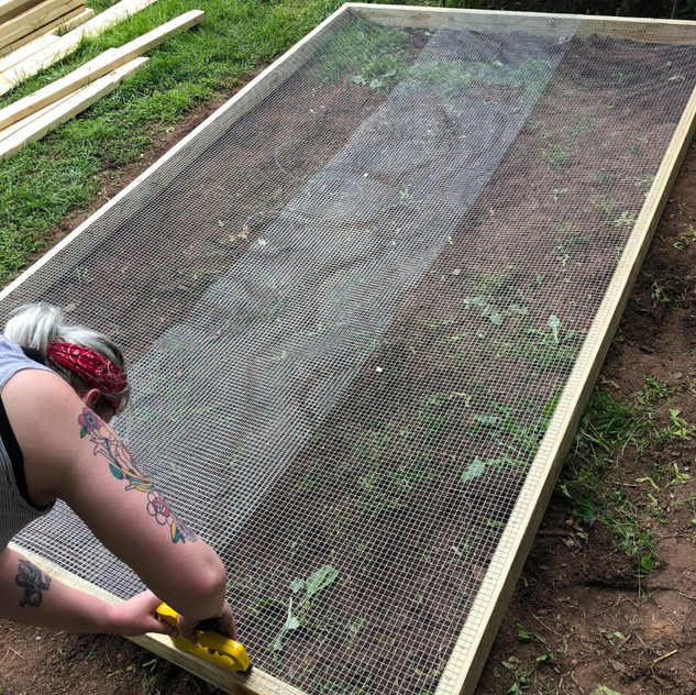 "We used 1/2"" hardware cloth over the entire bottom to discourage digging predators."