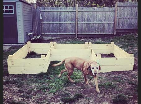So... I guess I need a garden?