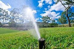 полив газона, полив огорода, сплинкеры, контроллеры, капельный полив
